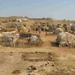 Misure preventive Covid19 nei campi profughi in Grecia